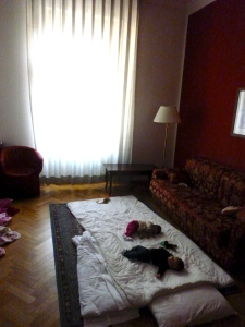 The girls sleeping on the living room floor in Vienna due to a safety issue with cribs provided